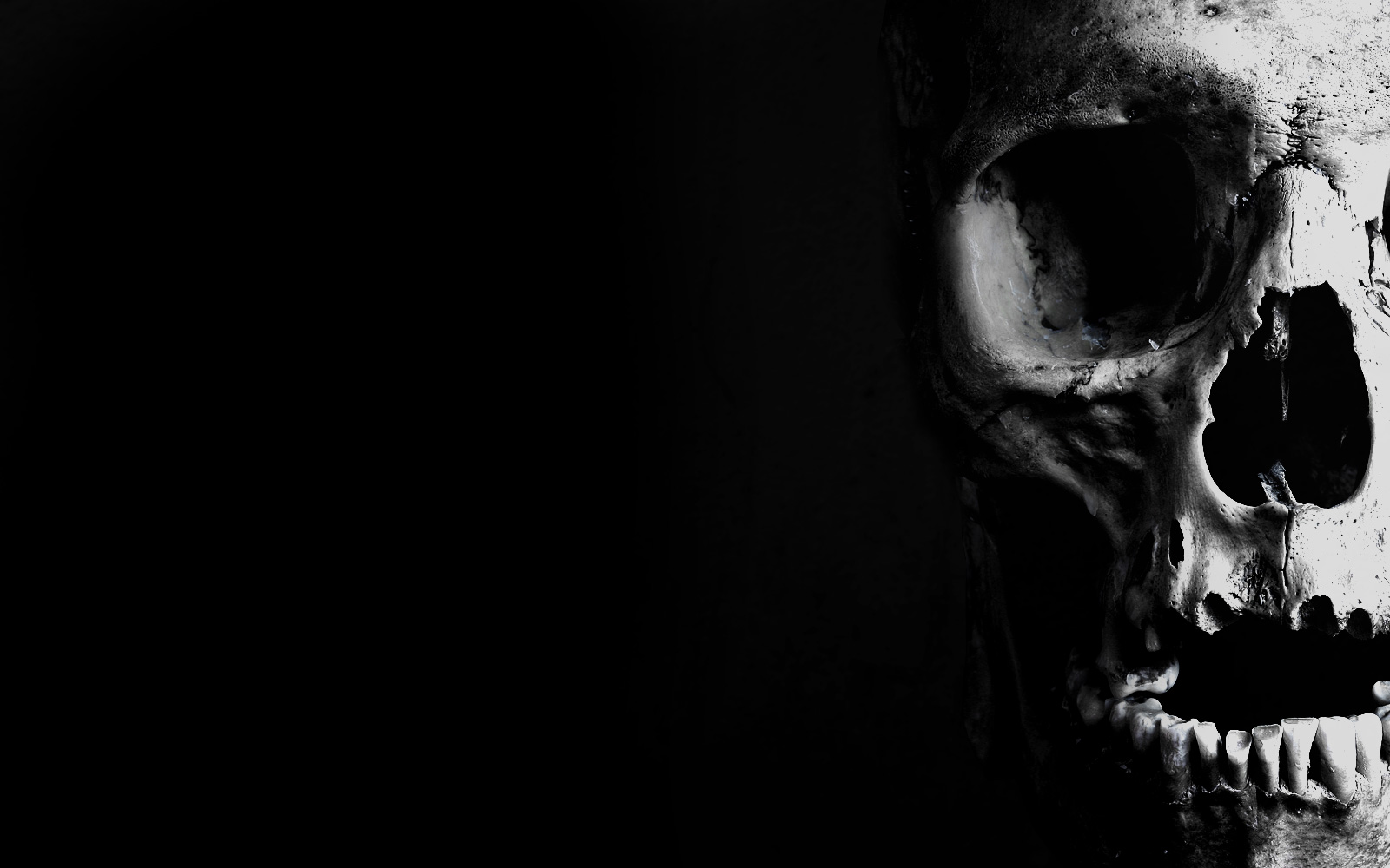 front_skull1