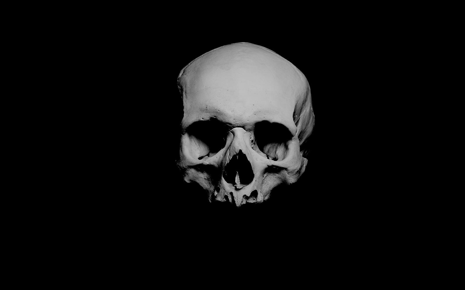 front_skull2